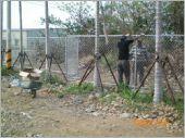 球場鍍鋅網圍籬