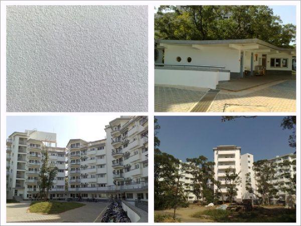 低污染多機能單層彈性塗料 ( 新竹清華大學學生宿舍 < 2007年11月 > )