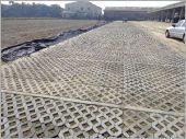 植草磚工程實績/柳營樹脂工廠