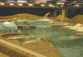 沖擊水柱水療池