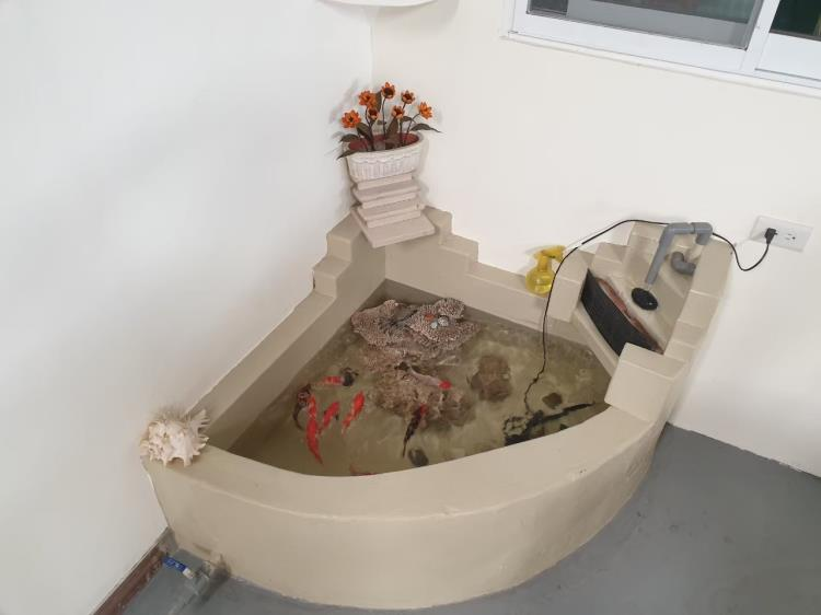 ALC輕質隔間白磚造型魚缸